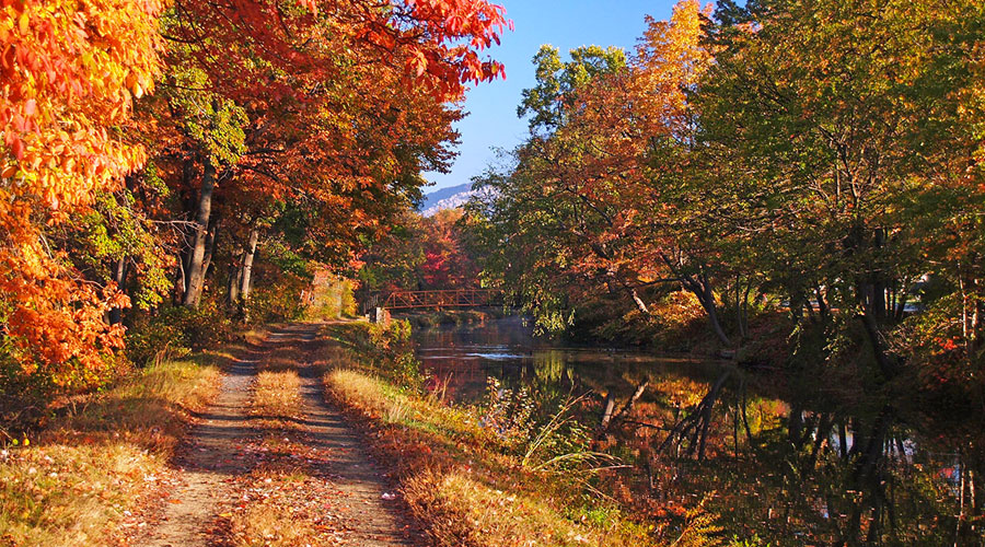 Autumn splendor along the canal